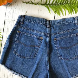 Embroidered cactus denim cut-offs size 32