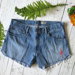 Ralph Lauren Polo denim cut-offs size 36