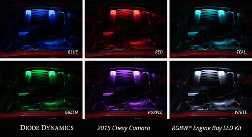 RGBW Multicolor Engine Bay LED Kit