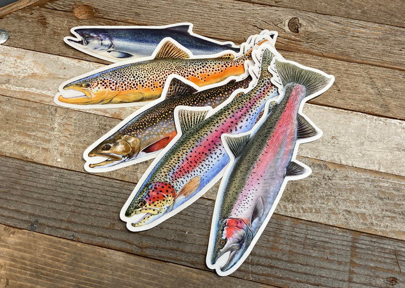 Trout/Salmon sticker pack (SP)