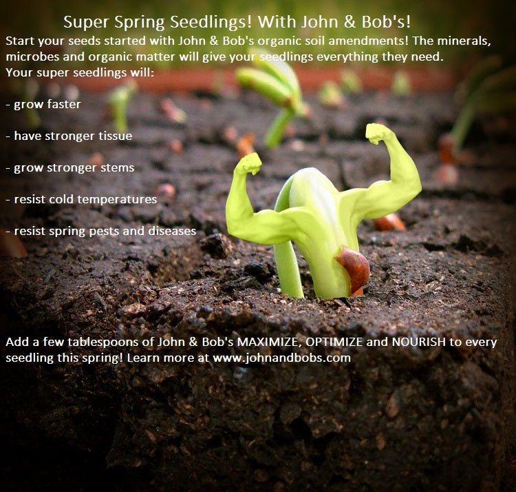 Stronger seedlings with John and Bob's!