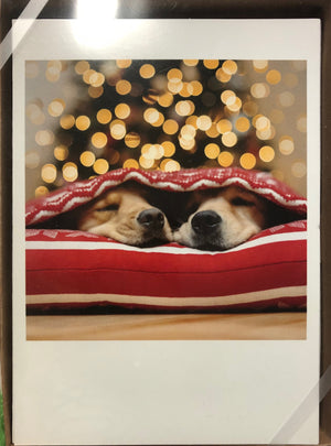 Sleeping Puppy Christmas Card-10ct.