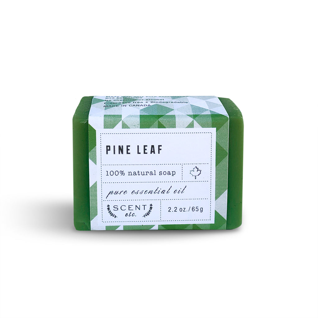 Pine Leaf soap mini soap