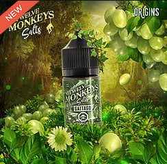 Gattago by 12 Monkeys ejuice nic salts