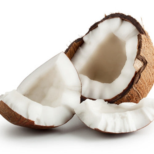 Coconut by TFA