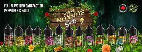 12 Monkeys Nic Salts