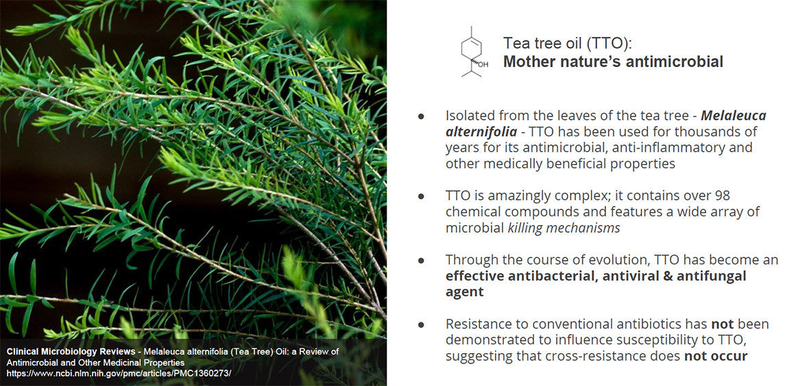 Barrier Body Wash science: tea tree oil antimicrobial properties