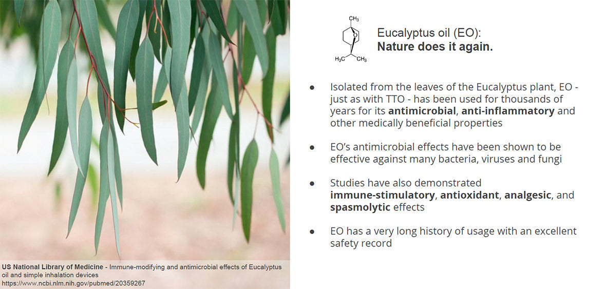 Barrier Body Wash science: eucalyptus oil antimicrobial properties