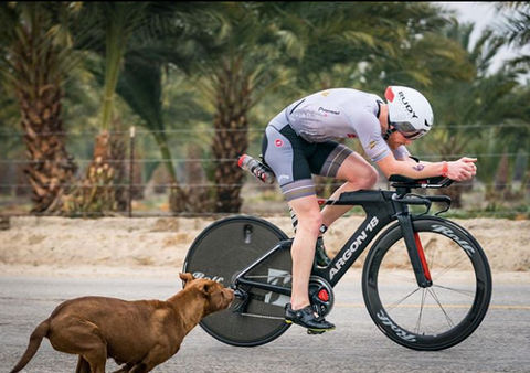 Eric Lagerstrom at Ironman Indian Wells 70.3 triathlon being chased by a dog on course