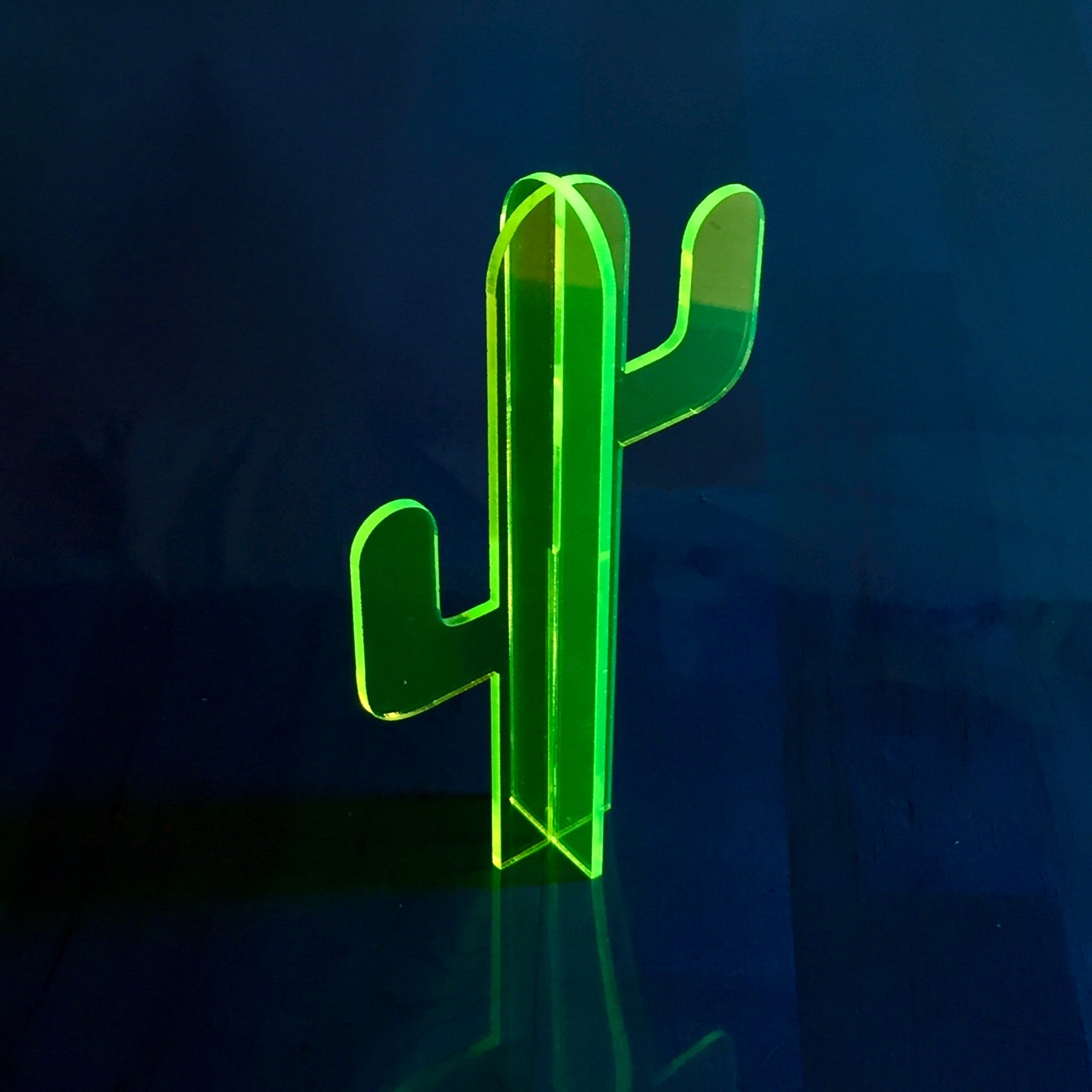 Small Fluorescent Cactus Set