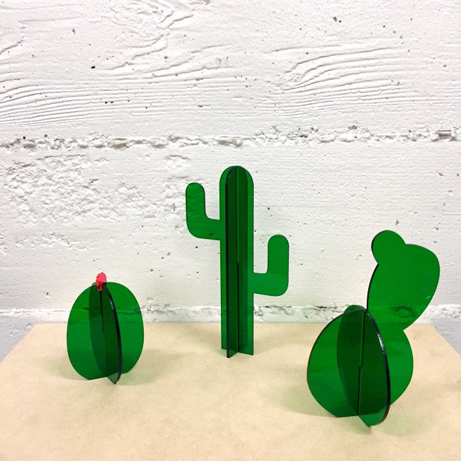 Small Green Cactus Set