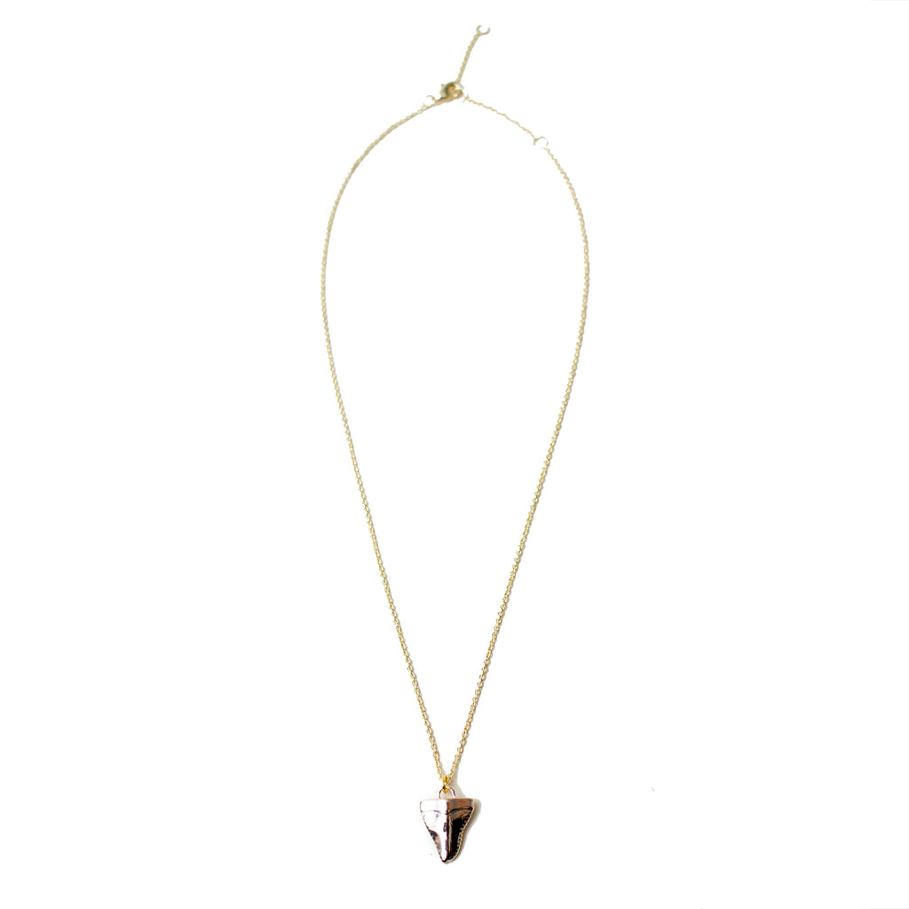Shark Tooth Necklaces - Honey Rose & K