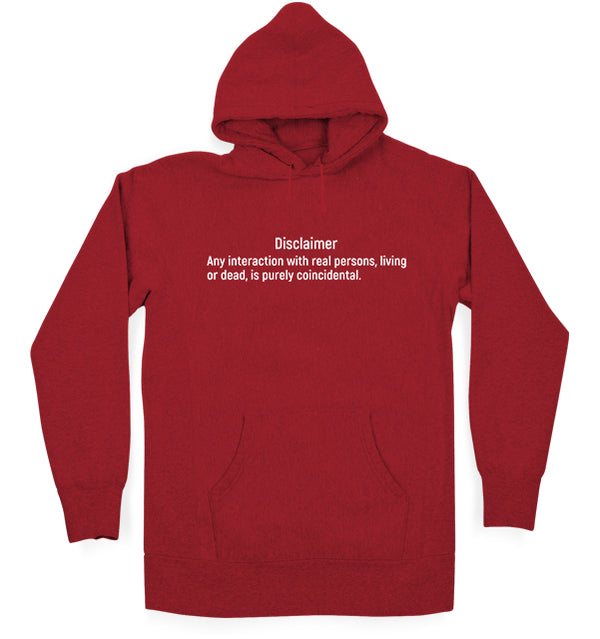 Introvert Disclaimer Kids Hoodie