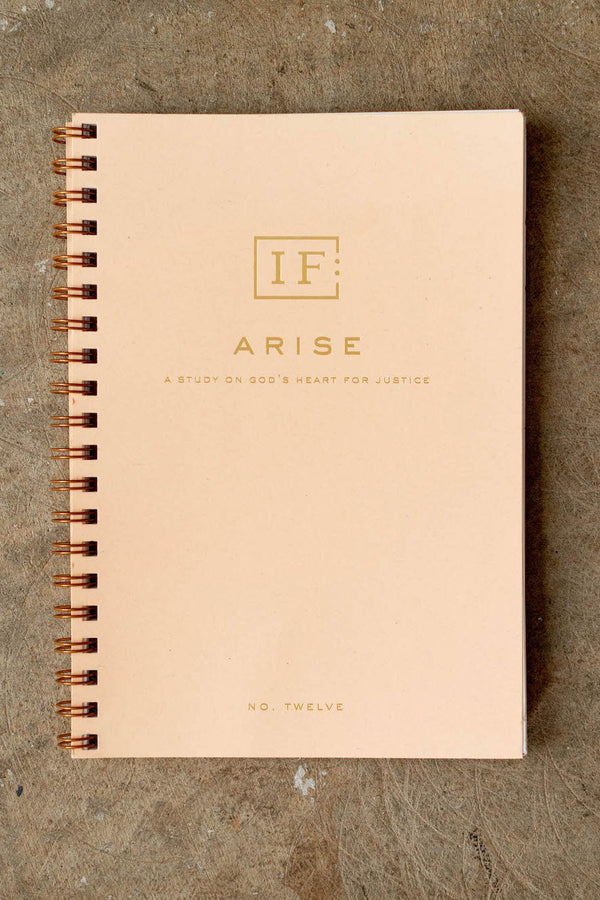 Arise: A Study on God's Heart for Justice