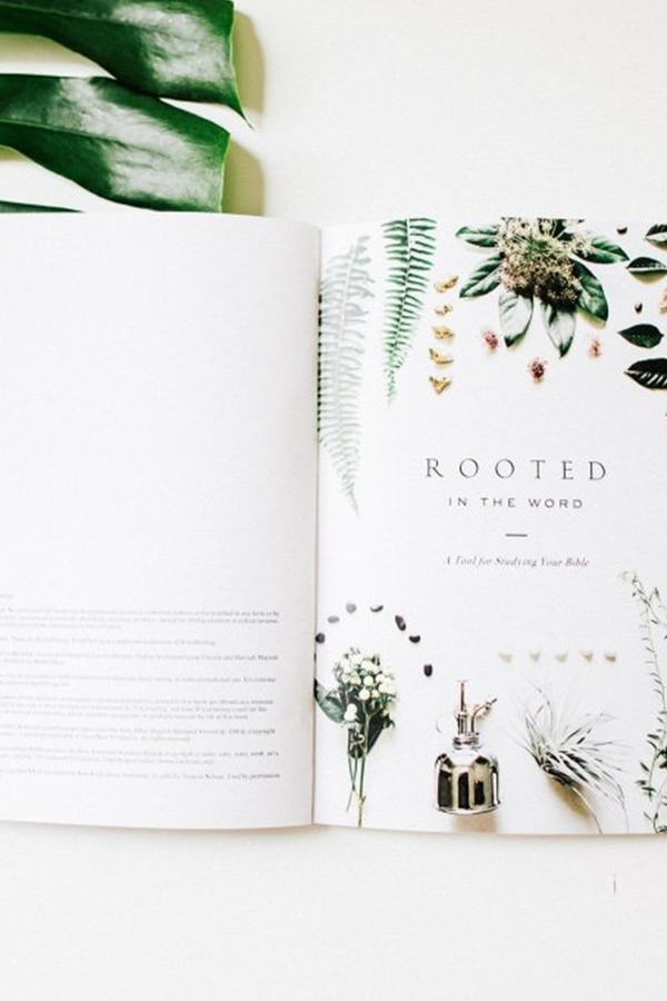 Rooted in the Word: A Tool for Studying the Bible