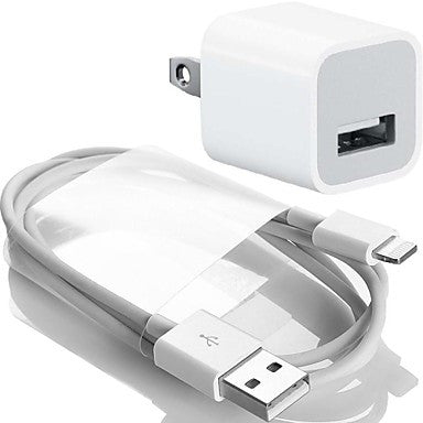 DSB® AC Charger with 1.0 Meter USB A to 8-Pin Charging Sync Cable for iPhone5/5S/5C/6(1.0 Amp)