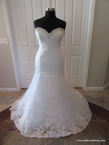 the last minute bride discount wedding dresses bridal gowns