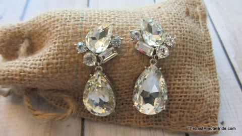 Wow Factor Earrings