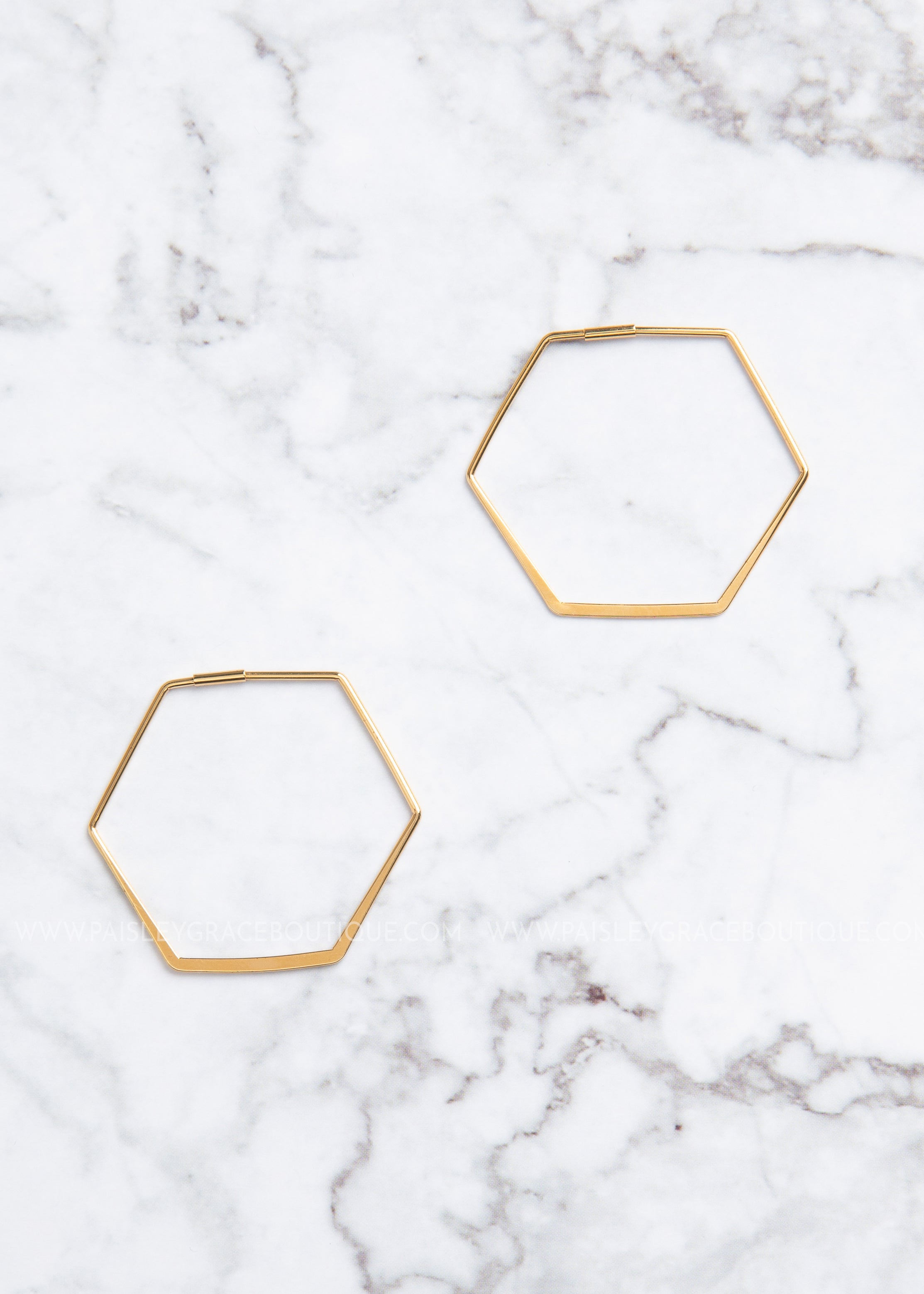 14K Gold Dipped Hexagon Earrings