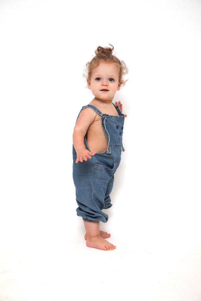 The Little Overall. The Great Little. - THE GREAT. by Emily & Meritt