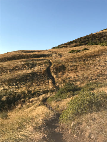 WanderFit hikes at Green Mountain park