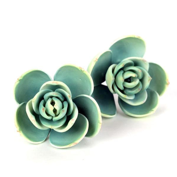 SUCCULENT SMALL GREEN 2PC