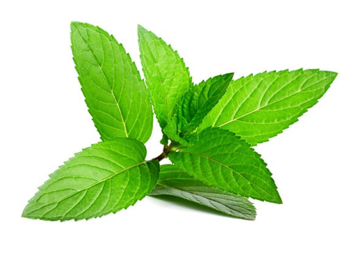 NATURAL FLAVOURING 50ML PEPPERMINT