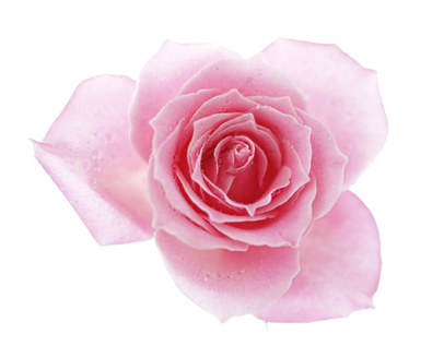 NATURAL FLAVOURING 50ML ROSE