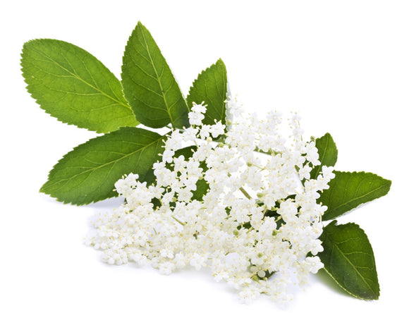 NATURAL FLAVOURING 100ML ELDERFLOWER
