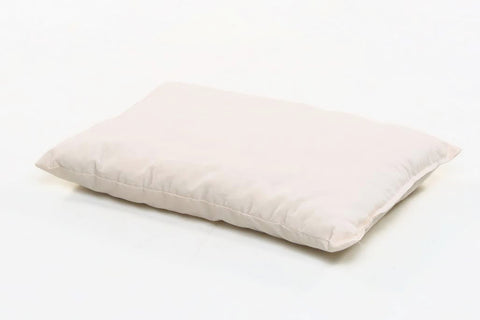 Organic Toddler Pillows/Cases