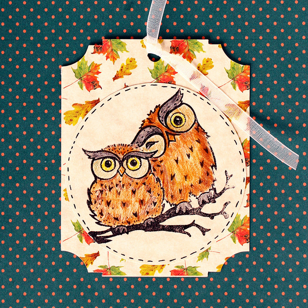 Wise Little Owl & Coloring 101