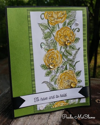 Rose Border with Paula McClane