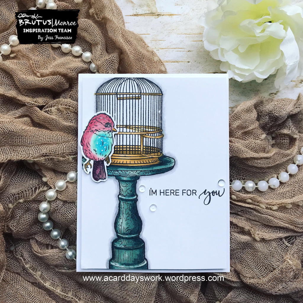 Clean & Simple Vintage Card with Feathered Friends