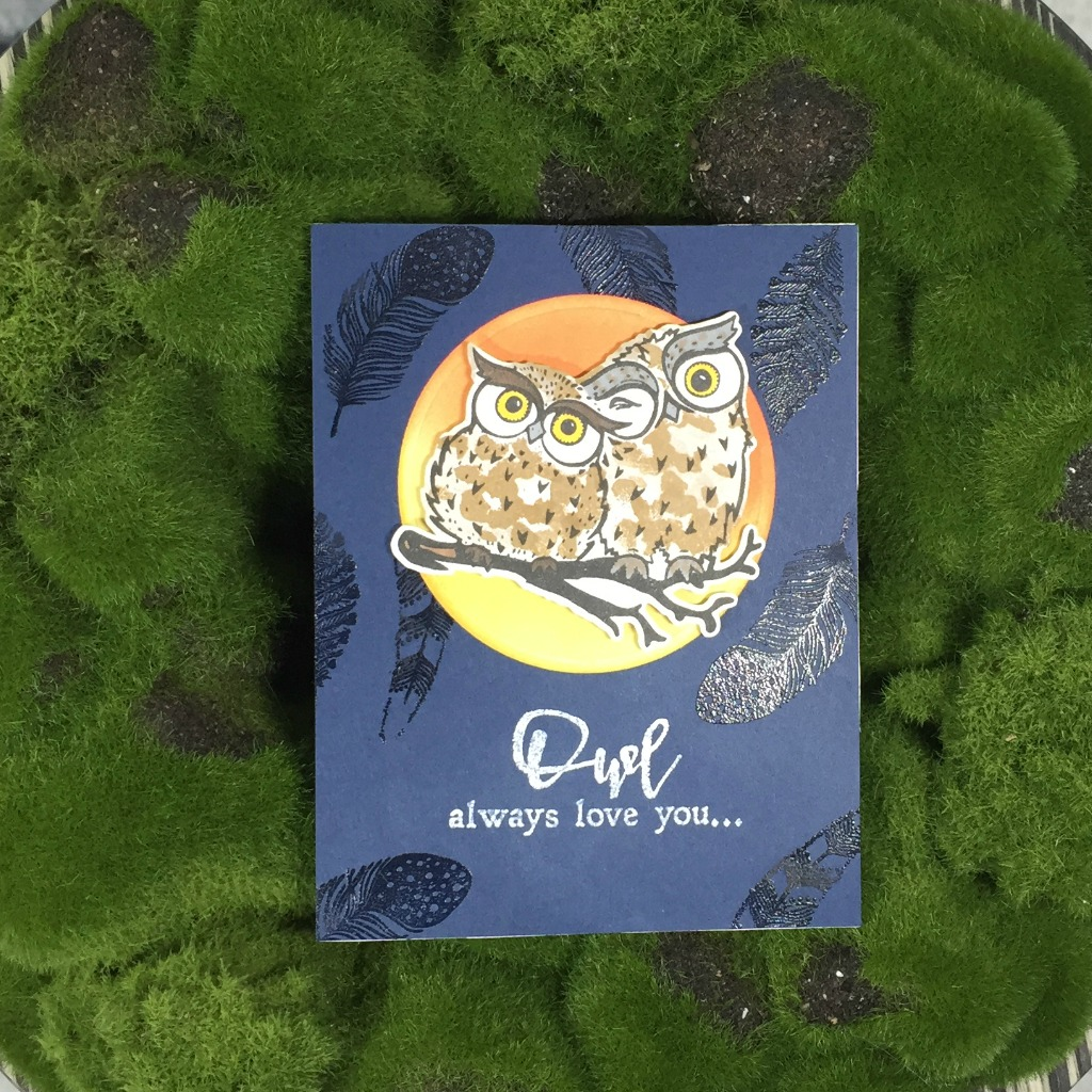 August 2016 Sneak Peek-Owls
