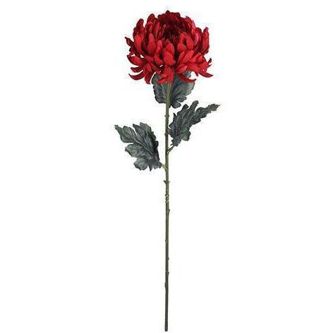 Longstem Mum Pick: Red, 4 x 27.5 inches