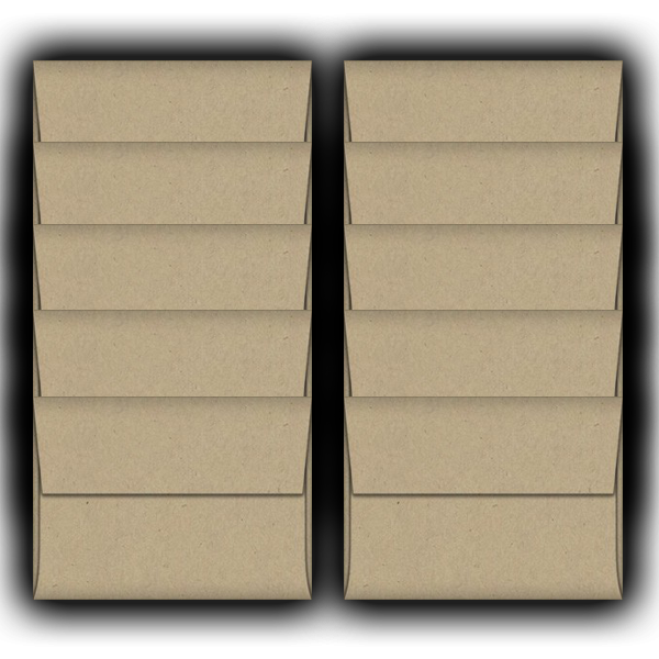 Lunch Bag-A2-Envelopes-10 Pack