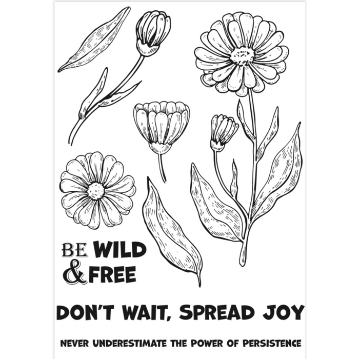 Coloring Pages - Wild & Free