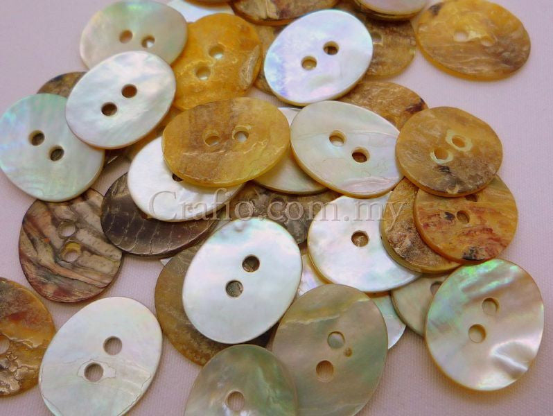 Oval Seashell Buttons