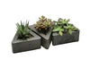 Rough Fusion Triangle Pot - Set of 3