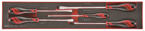 5 Piece Flat & PH Type Screwdriver Set