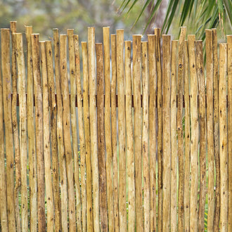 Tea Tree/ Latte Poles 10 Sticks Bundle
