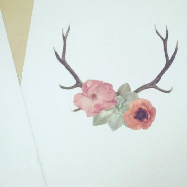 Catalogue Series-Antler Print