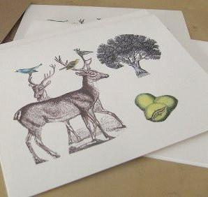 strange seed notecards, set of 5 (deer)