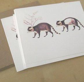 strange seed notecards, set of 5 (raccoon)