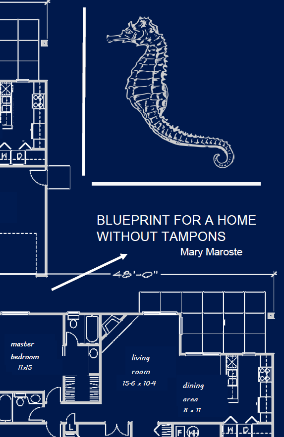 Blueprint for a Home Without Tampons | Mary Maroste