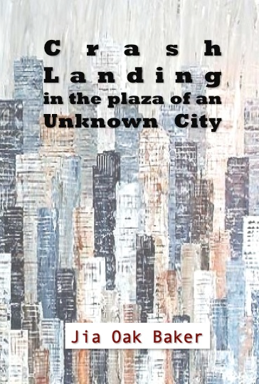 Crash Landing in the Plaza of An Unknown City / Jia Oak Baker