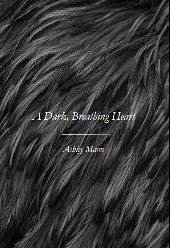 A Dark, Breathing Heart  | Ashley Mares