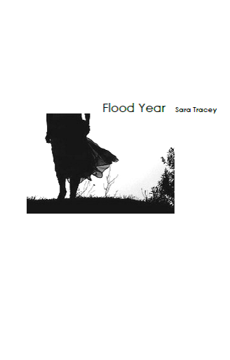 Flood Year / Sara Tracey