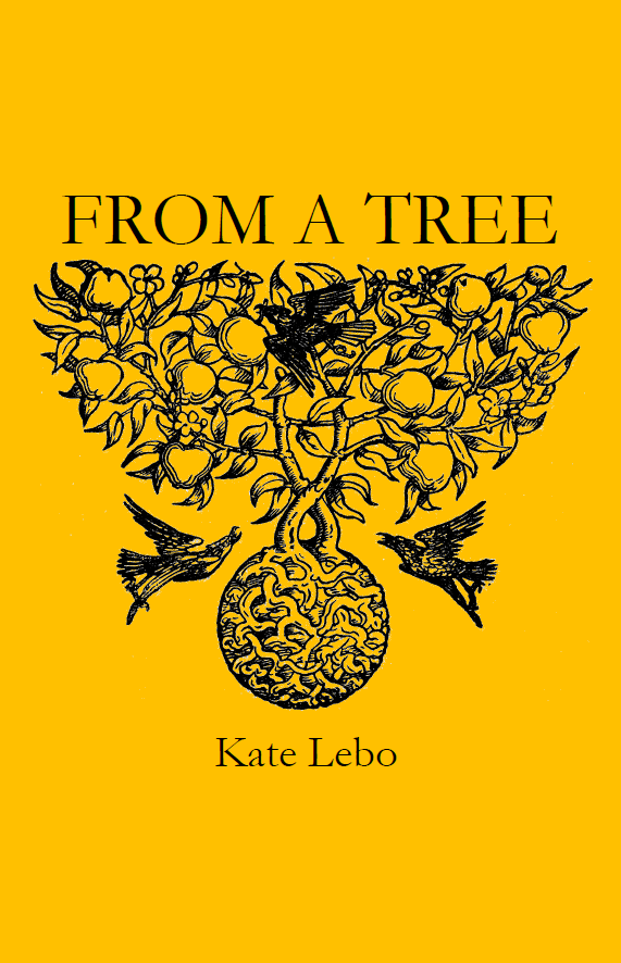 From A Tree |  Kate Lebo
