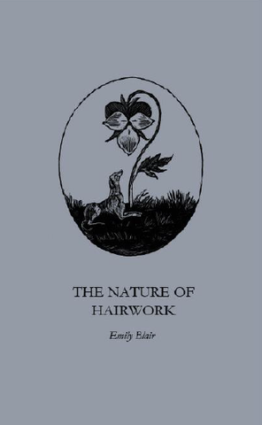 The Nature of Hairwork |  Emily Blair